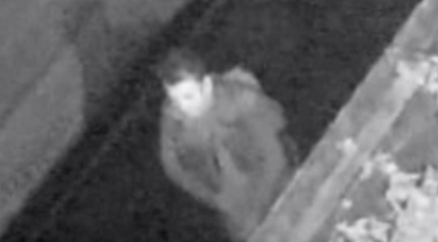 Woodford Green CCTV