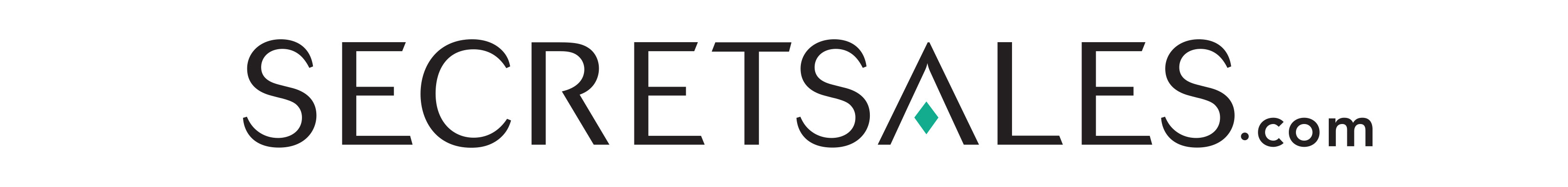 SecretSales logo