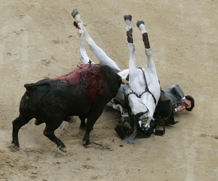 Bullfighter Horse Gored