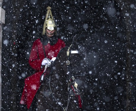 A guard at Buckingham Palace braves the snowfall