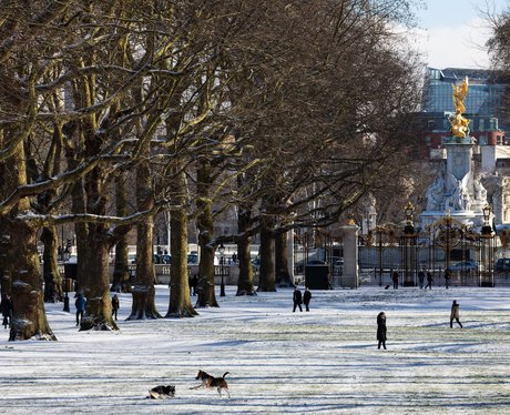 Green Park And The Victoria Memorial In The Snow